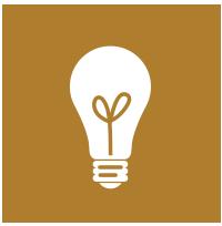 Biblical Theology light bulb