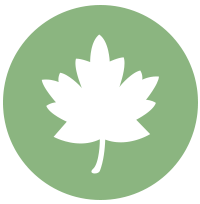 spiritual maturity leaf icon