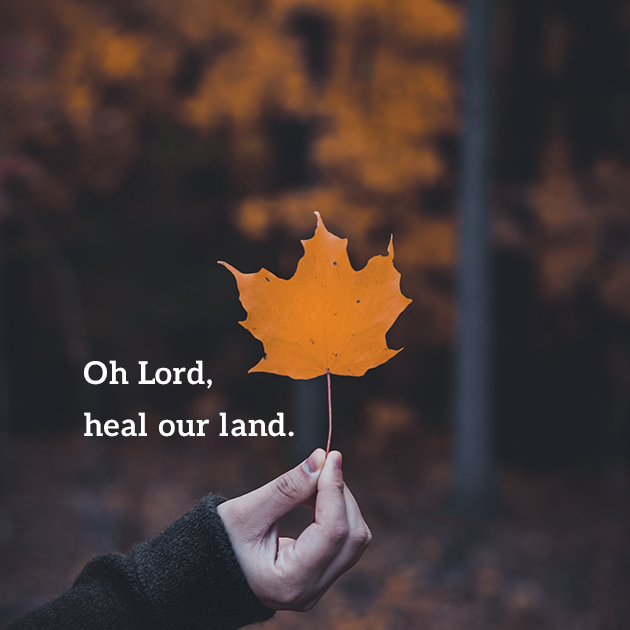 Oh Lord, heal our land.